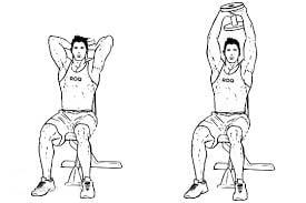 حرکت پشت بازو با دمبل